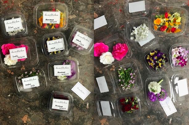 Edible Drinks Flowers